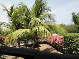 From the veranda, you can enjoy great views over the garden and in the distance the glare of the Caribbean Sea.