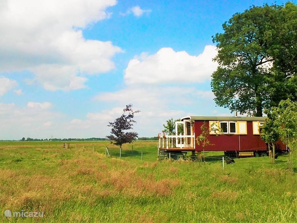 Vakantiehuis Nederland, Gelderland, Oldebroek stacaravan Landelijke Pipowagen