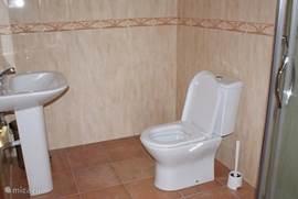 Badkamer met douchecabine, wastafel en toilet.