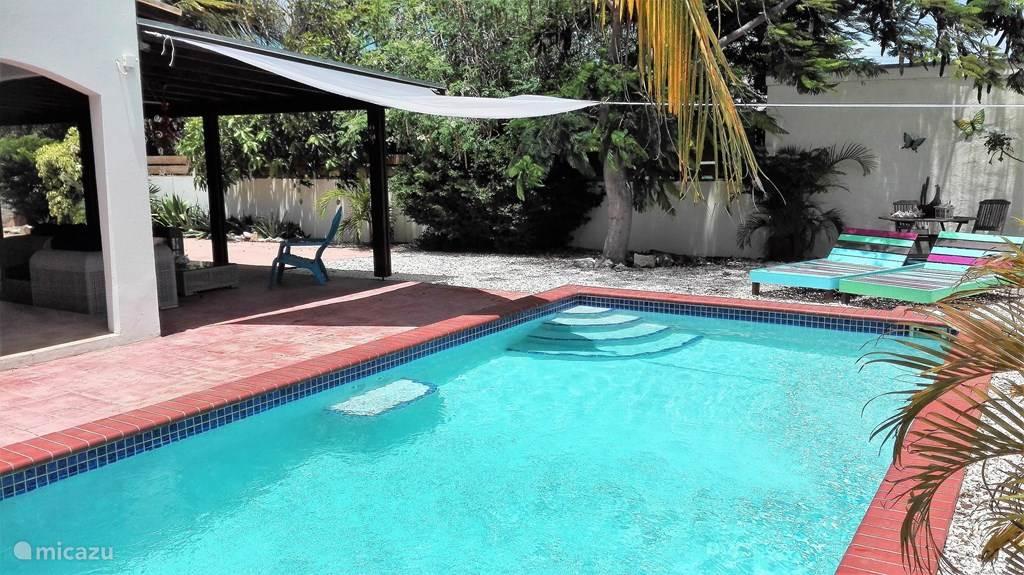 zwembad met heerlijke lounge plekken