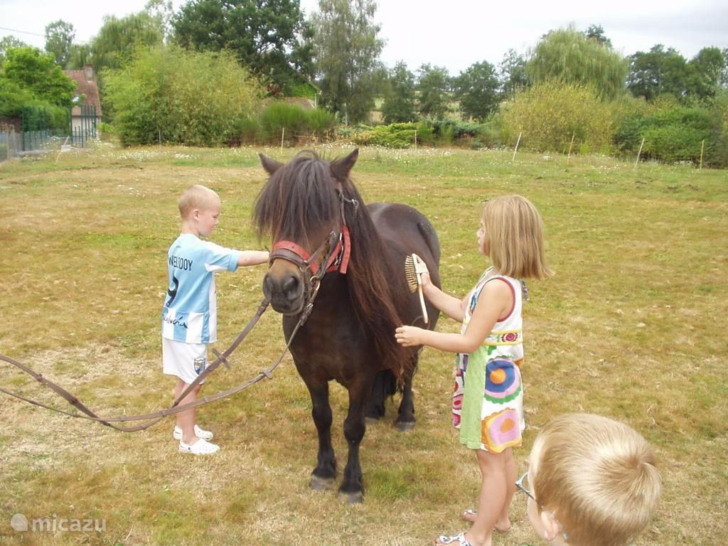 Knuffel poney Rosalie