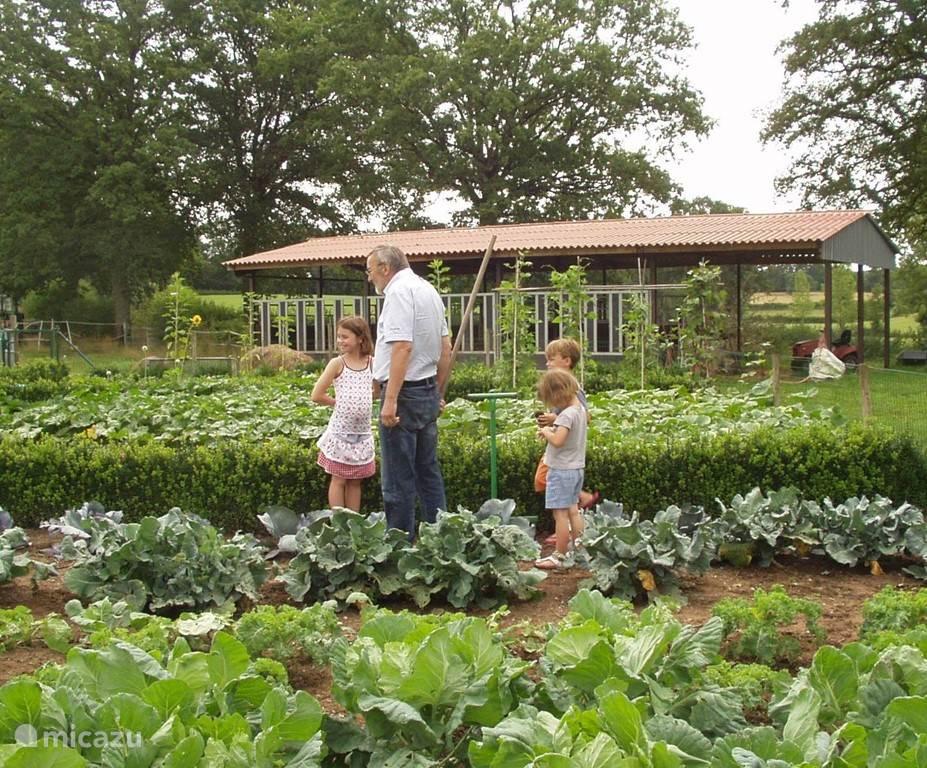 Ome Rinus toont onze jongste gasten de groentetuin met heerlijke groenten.