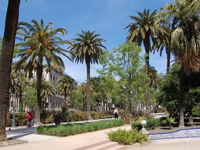Málaga op slechts 30 minuten rijden. Ook goed met de bus bereikbaar vanaf de vakantiewoning.