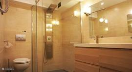 Luxurious bathroom with multi spray shower head