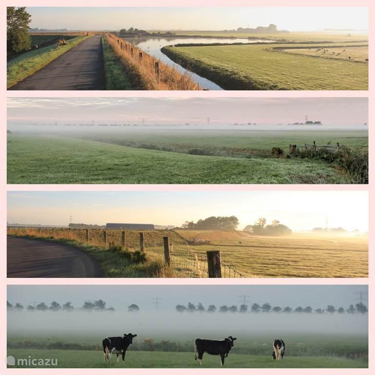 Onze Westfriese Dijk, direkte omgeving. 2e en 4e foto: uitzicht vanuit de tuin.