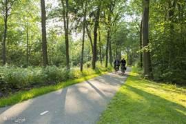 Genieten van de natuur! Nabijgelegen het Nationaal Park Dwingelderveld, bijna 4000 hectare heidegebied.
