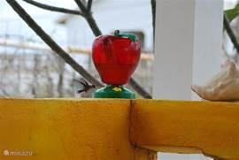 Kolibrie ...