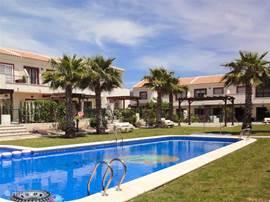 Het gezamenlijke zwembad in de mooie tuin met palmbomen