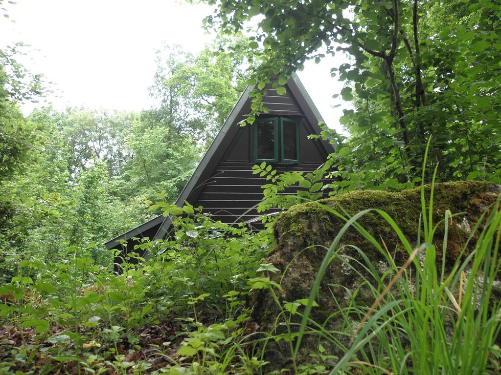 Heerlijk een weekje, midweek of weekend genieten in de Ardennen.Mooi uitzicht op het bos waar dagelijks tientallen vogelsoorten het terras bezoeken.
