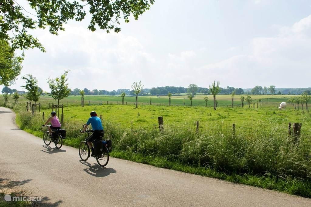 Direct vanuit de woning kunnen prachtige fiets- en wandelroutes gestart worden! Fietsroutes en wandelkaarten liggen bij de receptie voor u klaar.