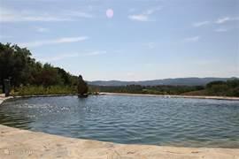 Door de heuvelachtige ligging van Podere del Buongustaio kan men bij de zwemvijver en vanuit de olijfboomgaard genieten van het panoramische uitzicht. Ik ben al jaren onder de indruk van het steeds veranderende licht en de prachtige kleuren van Umbrie, vooral in het voor en najaar weerspiegelt het b