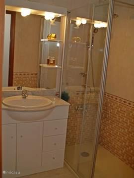 Deze badkamer heeft een inloop douche.