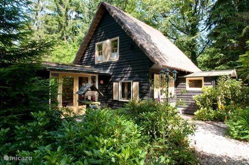Vakantiehuis Nederland, Drenthe, Drouwen vakantiehuis Vroege Vogels in Drouwen