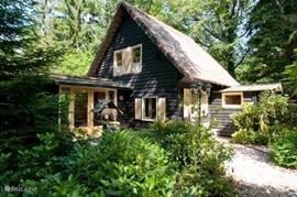 Ons 6-persoonshuis gelegen tussen het groen op maar liefst 700 m² grond.