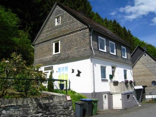 Vacation rental Germany, Sauerland, Winterberg holiday house Holiday young woodpecker