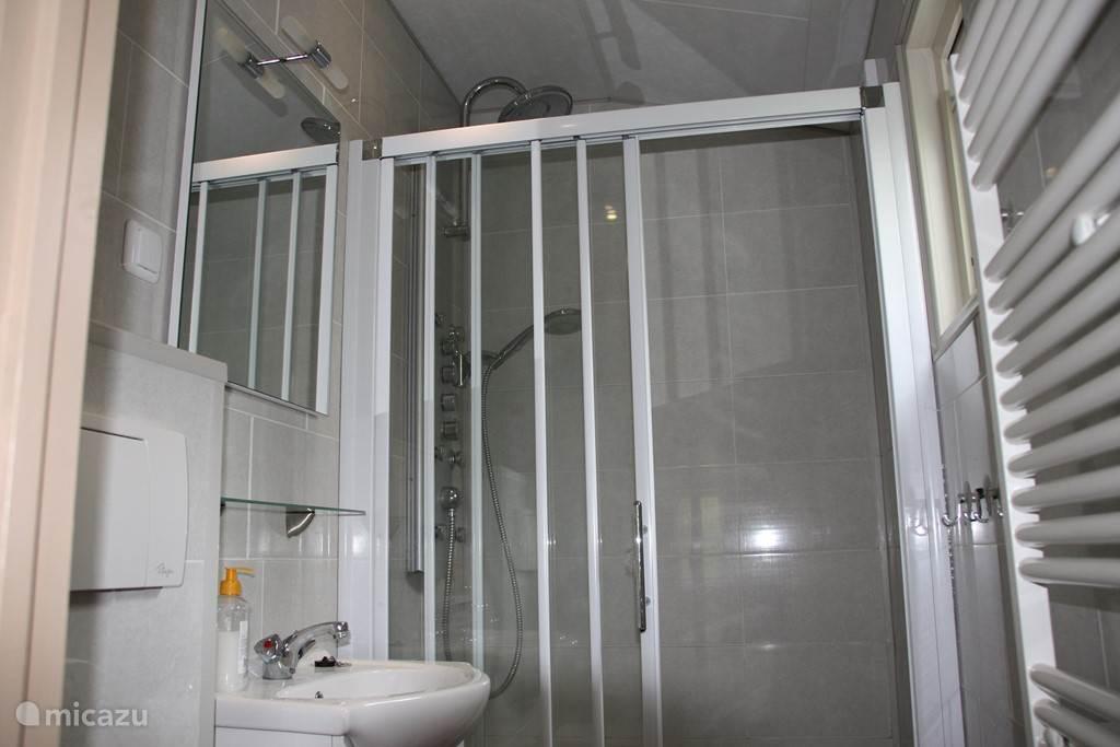 Op de badkamer bevindt zich een design radiator, toilet, wastafel en een heerlijke regendouche.