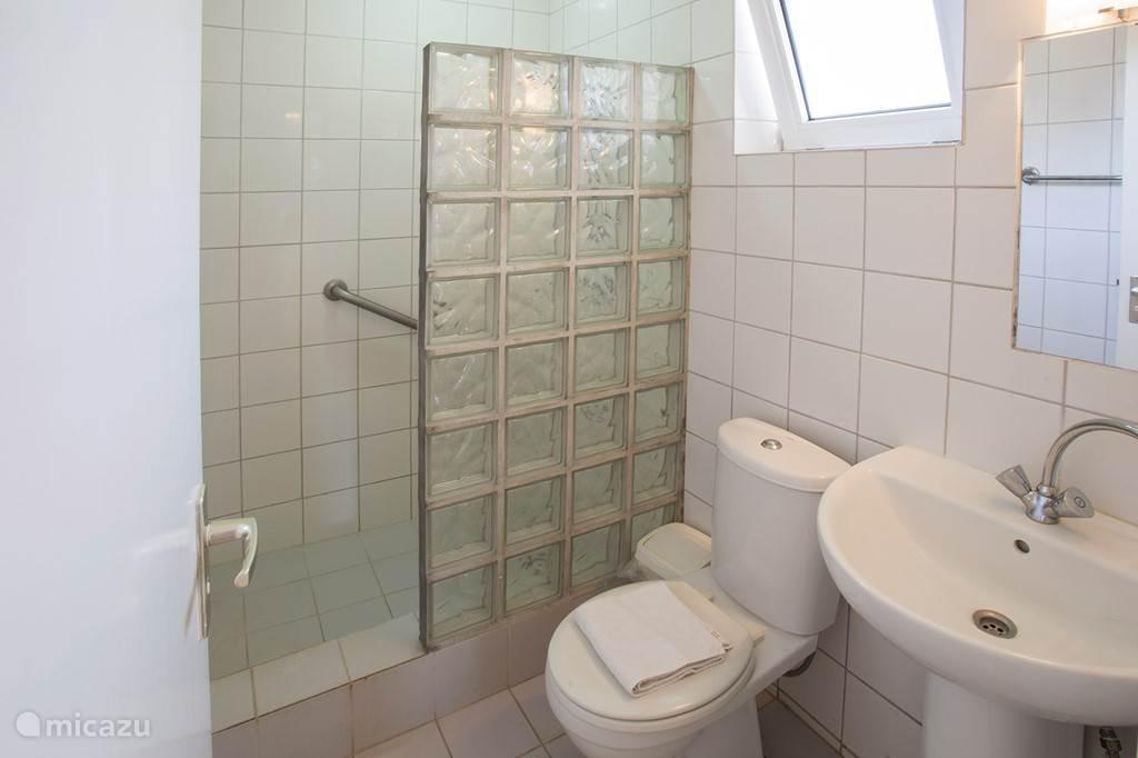 Badkamer begane grond, voorzien van warm water douche, wastafel en toilet.