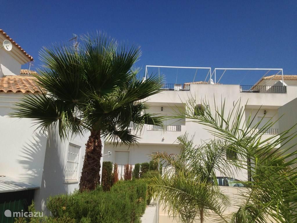 Dit is het achteraanzicht van de 2 naast elkaar liggende appartementen. Op het dakterras zie je het systeem van de uitrolbare zonneschermen.