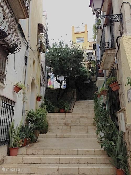 Kleine straatjes met honderden terrassen en restaurants in de binnenstad van Alicante.