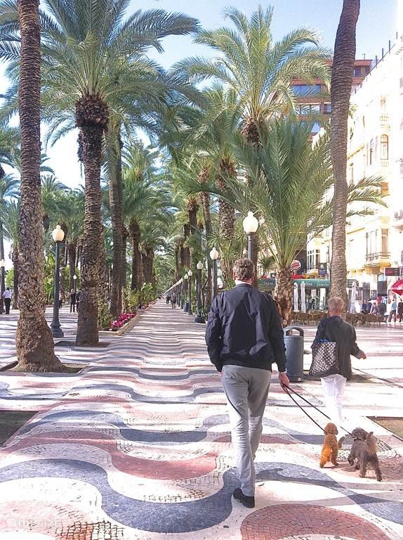 De Explanada; de schitterende boulevard van Alicante.