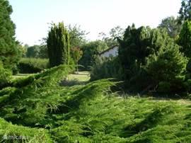Le Fenil ligt verscholen achter groen, vanaf de weg gezien