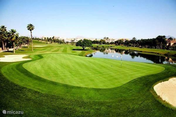 Golfbanen in de directe omgeving