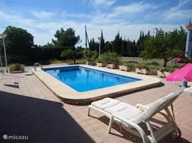 Heerlijk relaxen op comfortabele ligbedden aan het zwembad.