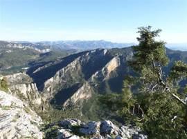 directe omgeving van Las Castañetas