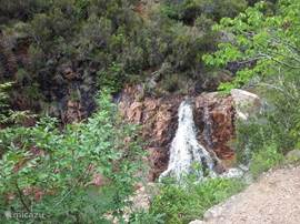 stream in the Esterel