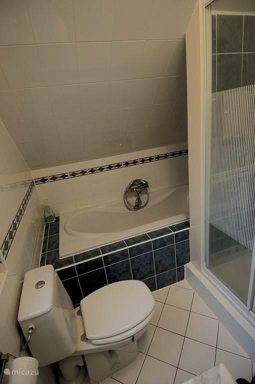 Complete heerlijke badkamer. Luxe wastafel, heerlijk ligbad, 2e toilet en een separate douchecabine.