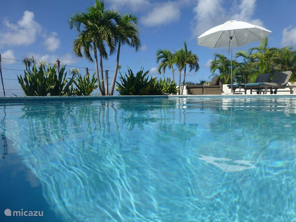 Relax and unwind on holidayhome Bonaire @the Breeze