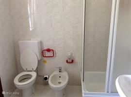 badkamer met douche, bidet en raam