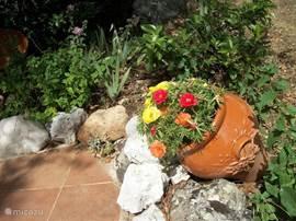 mooie tuinen