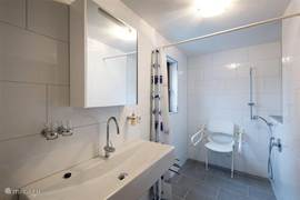 wheelchair accessible bathroom with large corner shower