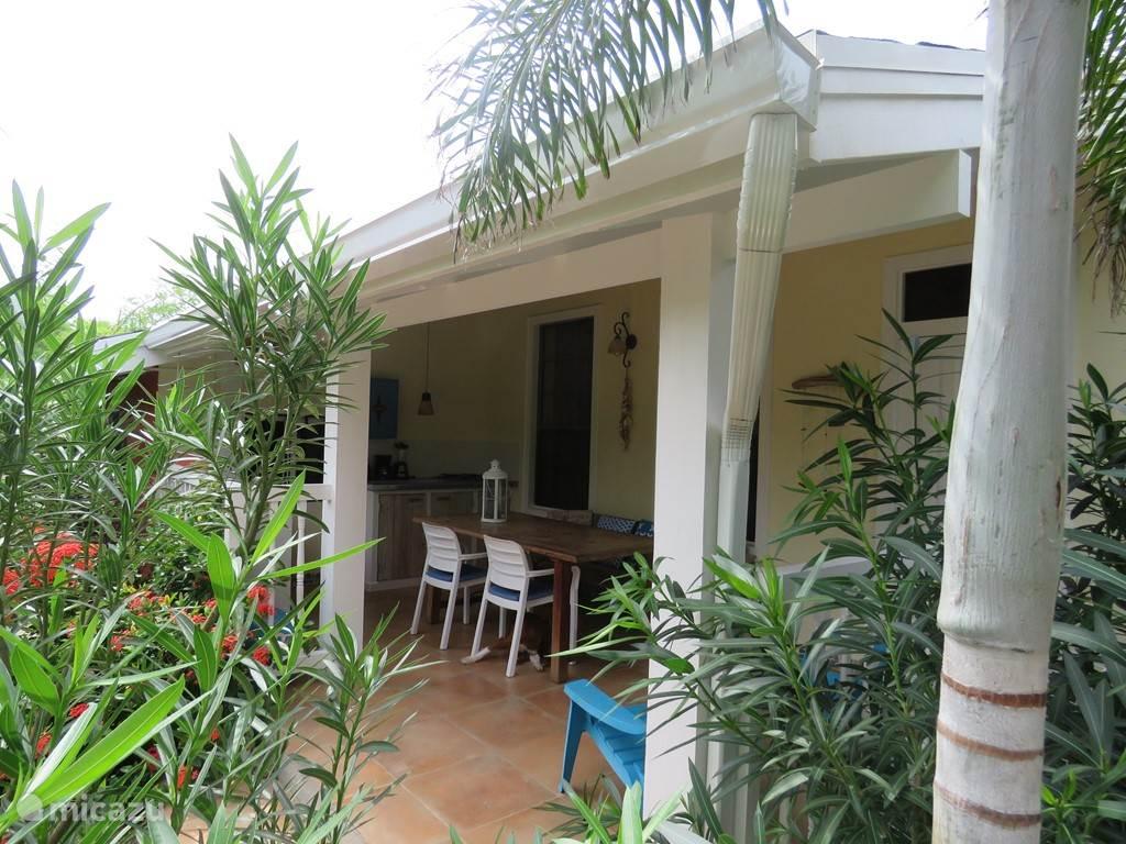 Ferienwohnung Aruba, Oranjestad, Oranjestad Appartement Wohnung in MangooZ Guesthouse