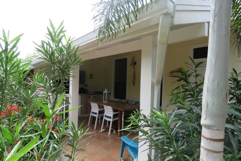 Vacation rental Aruba, Oranjestad, Oranjestad Apartment Apartment in MangooZ Guesthouse