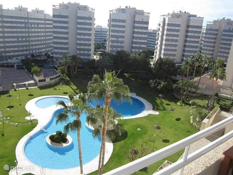 Vakantiehuis Spanje, Costa Blanca, El Campello - appartement Luxe App.Jardin del Mar strand,zwemb