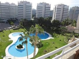 Grootste en mooiste tropische zwembad in El Campello met apart kinderbad, half diep en diep bad. Tevens zijn er aparte toiletten beschikbaar.