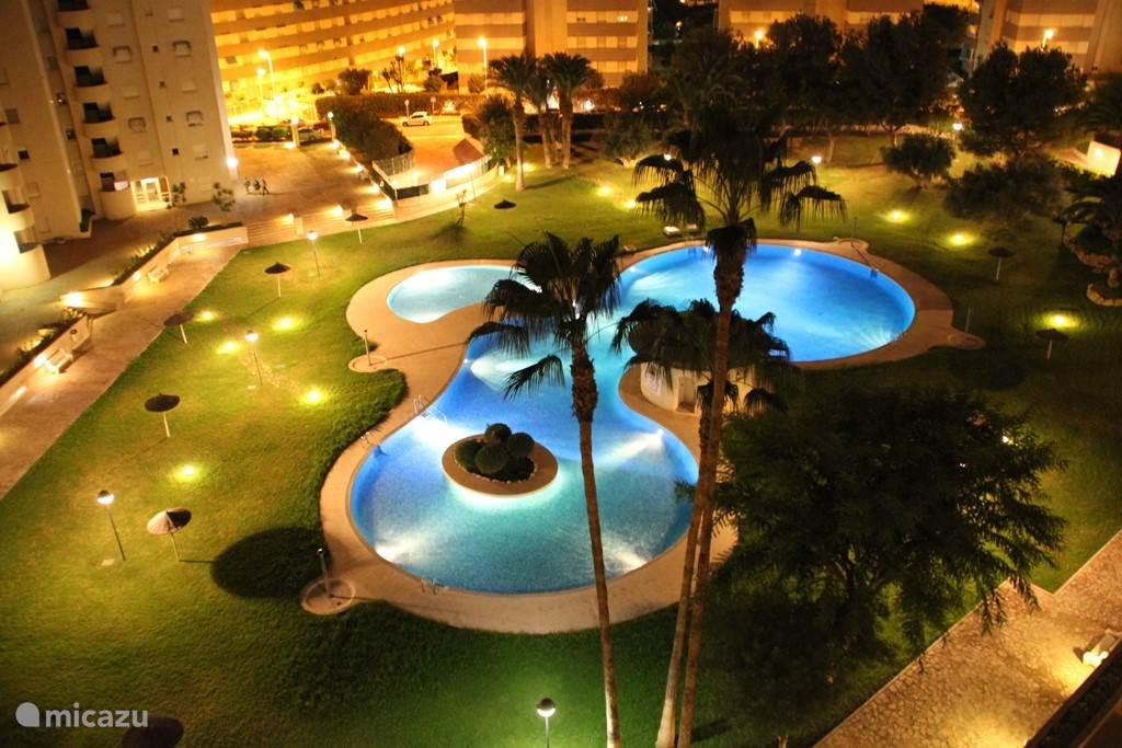 Vanaf ons terras op de 7e verdieping elke avond genieten van de prachtig verlichtte palmen tuin en tropisch zwembad