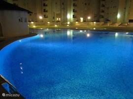 Feeëriek verlichte tuin en zwembad tot in de late uurtjes. Bijzonder mooi