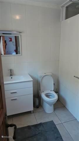 2 nieuwe badkamers met rain shower in benedenappartement