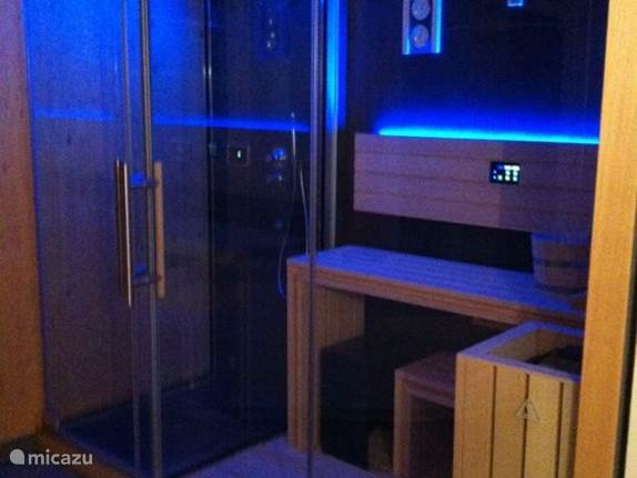 Sauna, steam room / shower with LED lights.