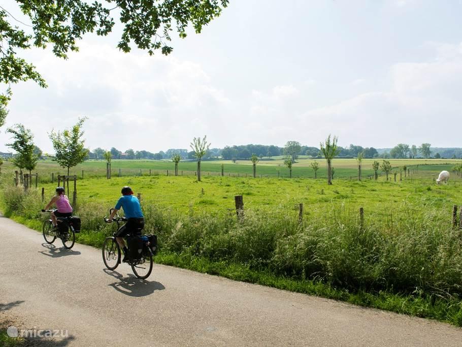 Prachtige fiets- en wandelroutes door het mooie heuvelland kunnen direct vanuit de woning gestart worden!