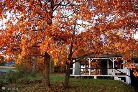 Vacation rental Belgium, Ardennes, Septon Bungalow Laurent