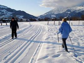 X-Country / Winter Hiking: In the vicinity of the Holiday-homes.