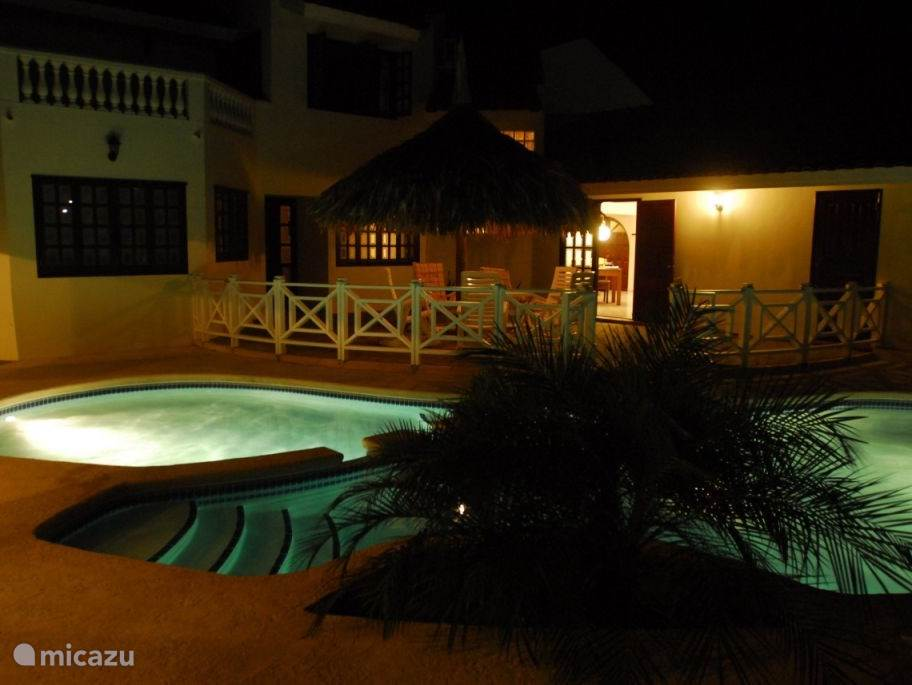 Swimming pool by night as seen from the porch.