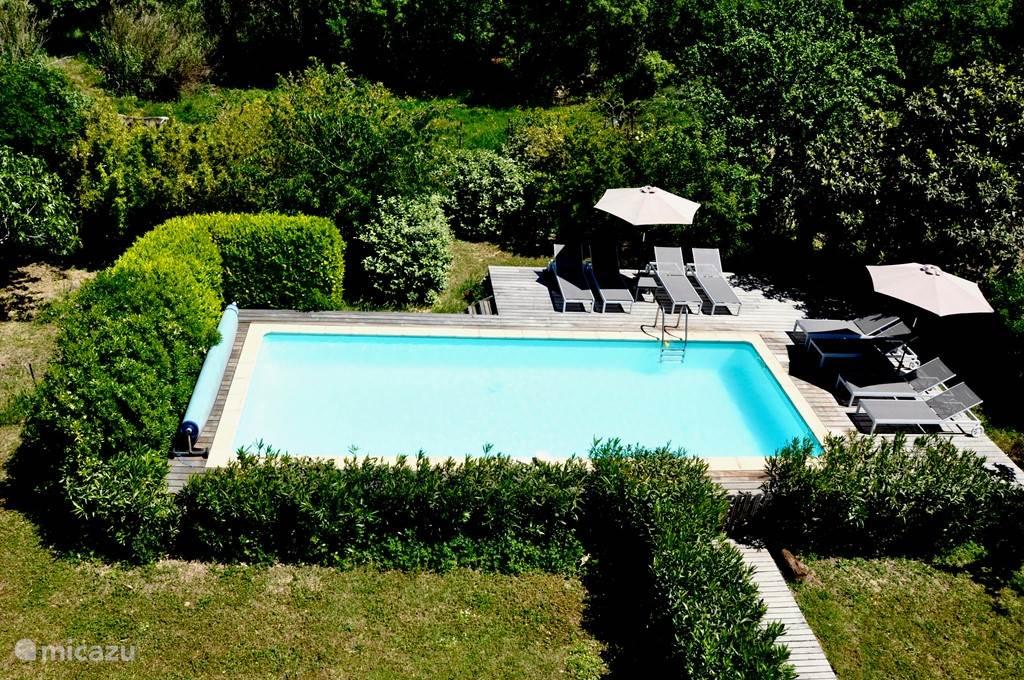 Het zwembad met relaxte ligbedden