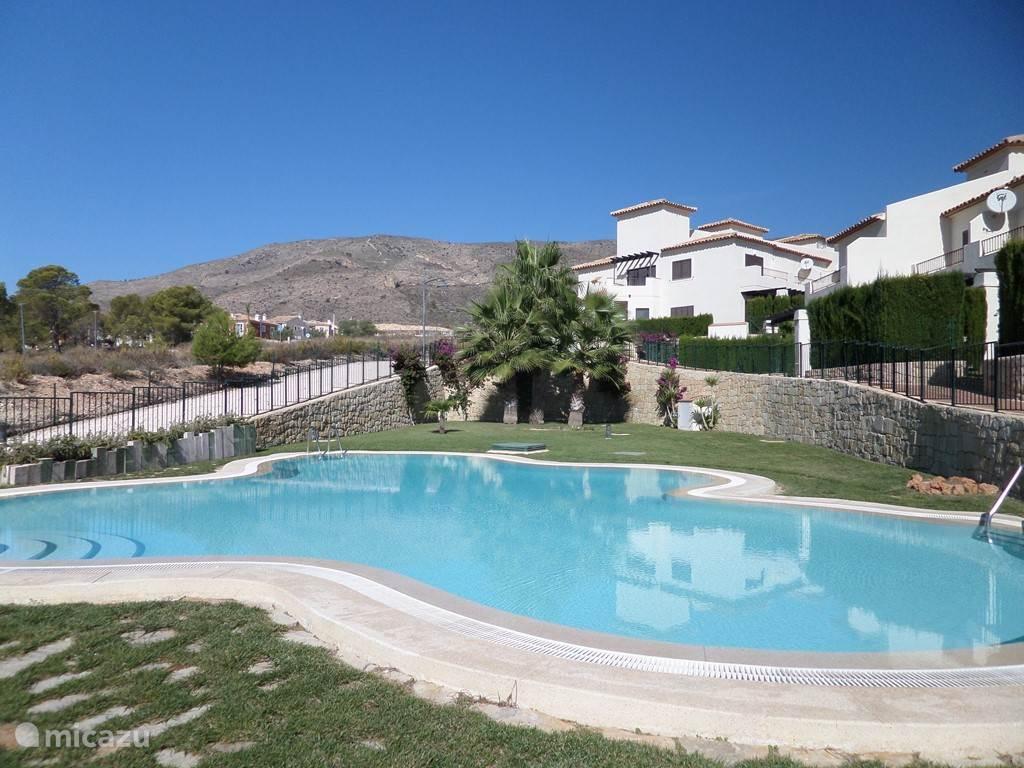 Het ruime zwembad met op de achtergrond de bergen
