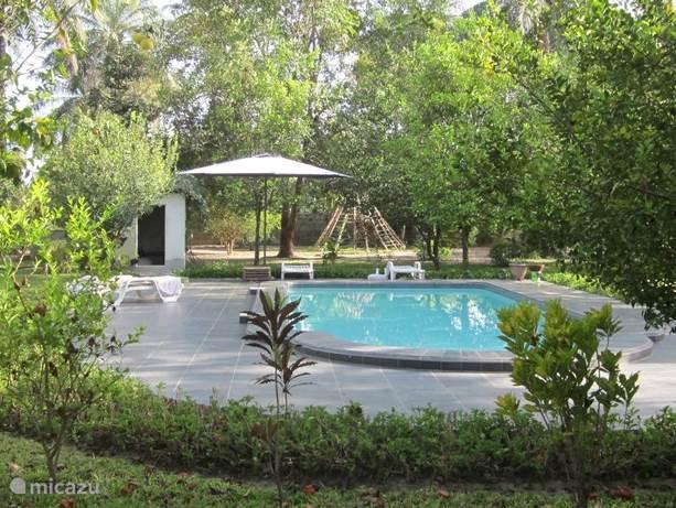 Zwembad in de prachtige grote tropische tuin van 6000 m2