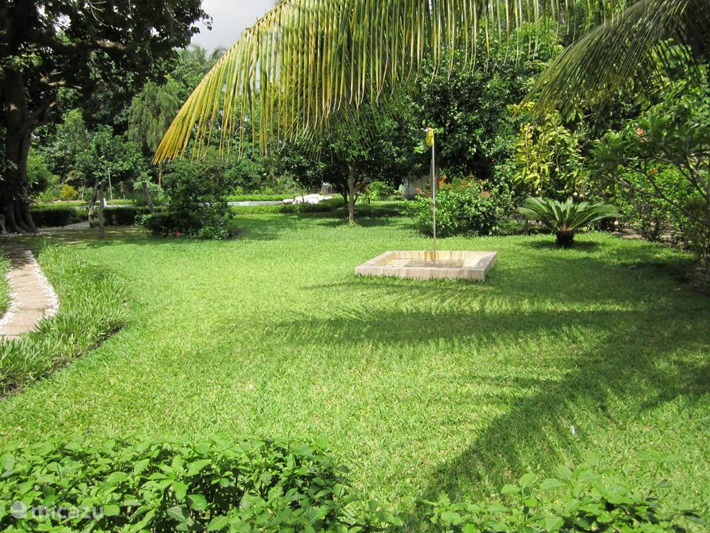 In de tuin bevinden zich 2 buitendouches.